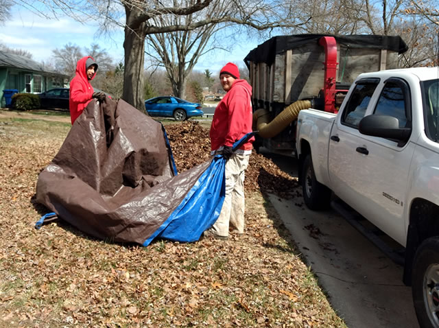St. Louis Leaf Removal